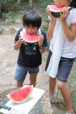 Watermelon_4